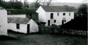 Rosemorder Farmhouse and yard, Rick in the mowhay in background, mid 1950's